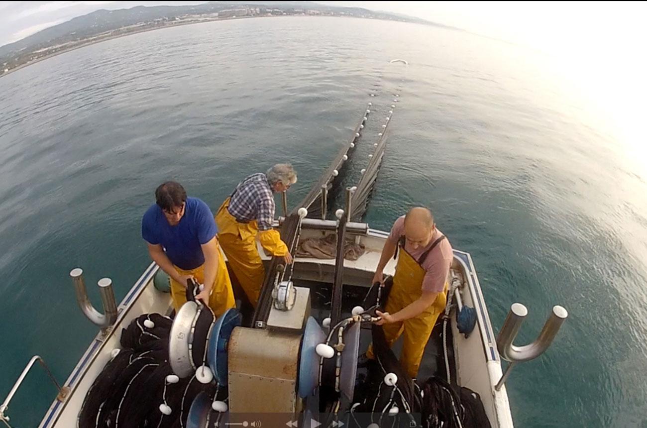 A sustainable sandeel fishery in the Mediterranean.