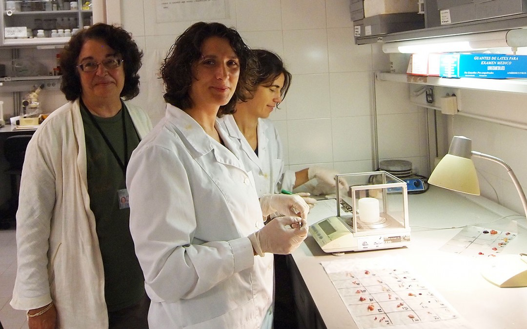 Scientists from the Institute of Marine Science in Barcelona studying the health of a fishery.